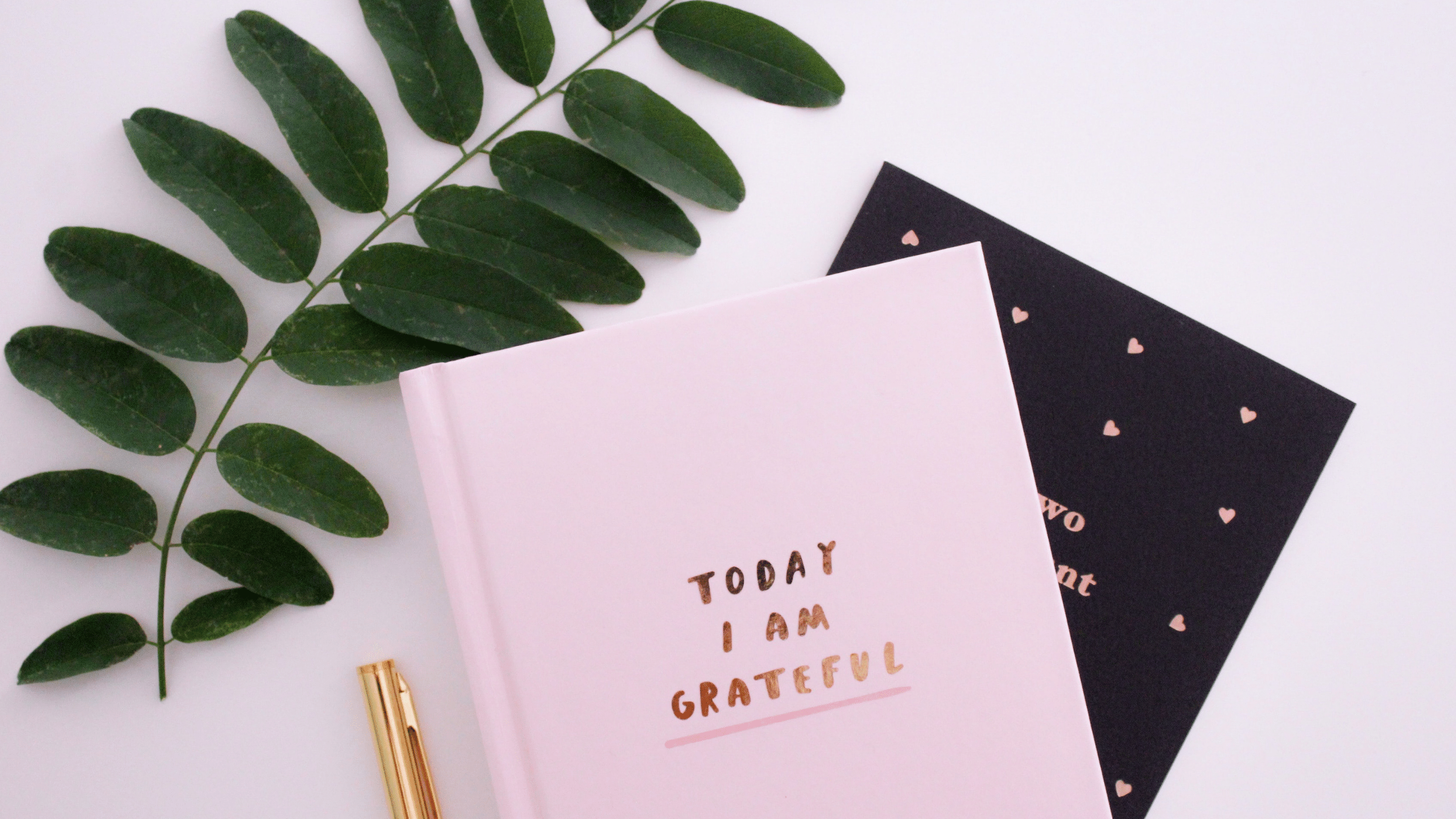 How to start a journal for mental health Tips and advice for beginners